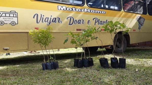 """Projeto """"Viajar, doar e plantar"""" é implantado em Ivorá"""